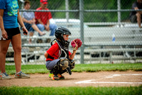 2015-05-23_HORD_LIONS_MINORS-20