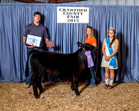 RESERVE CHAMP BEEF FEEDERSb